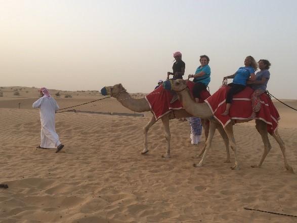 Dubai_Camel